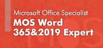 MOS Word 365&2019 Expert